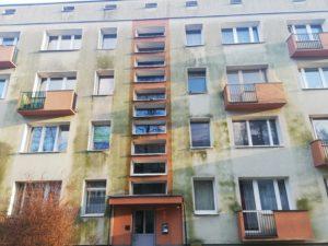 Zazielenione, stare elewacje w Krakowie